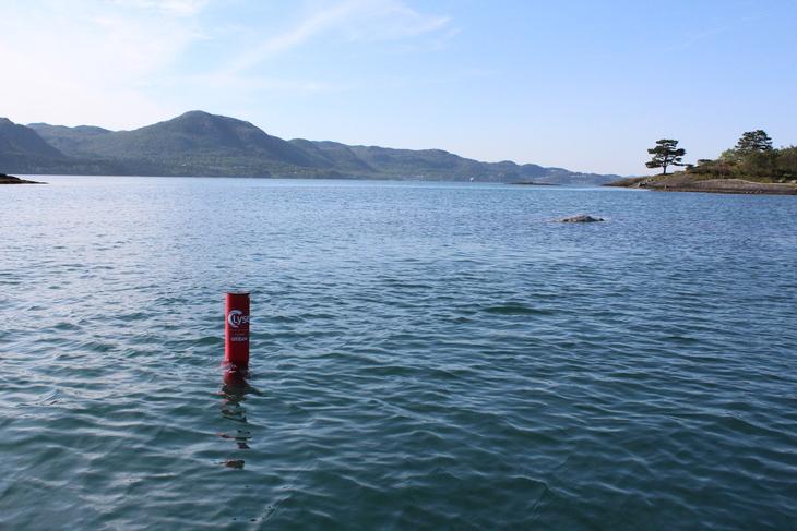 Temperaturmåler i sjøen